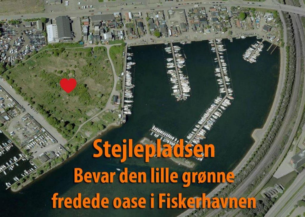 Stejlepladsen og Fiskerhavnen set fra luften